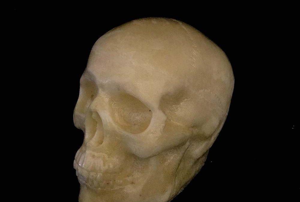 Small Size Skull